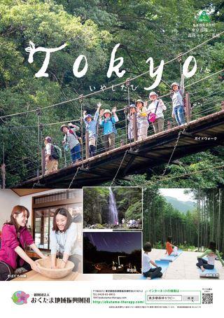 奥多摩森林セラピー Tokyo いやしたび