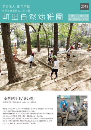 学校法人 正和学園 幼保連携型認定こども園 町田自然幼稚園 2018年度