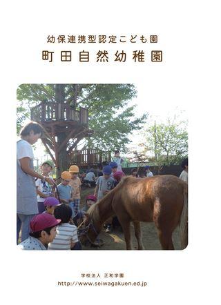 幼保連携型認定こども園 町田自然幼稚園 学校法人 正和学園